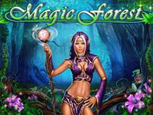 Аппарат Magic Forest - тестируйте на веб-портале игрового зала